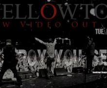 15_Mellowtoy