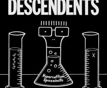 08_Descentents