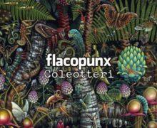 13_flacopunx