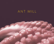 antmill