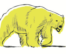 VALLANZASKA_cs_album_ORSO_GIALLO