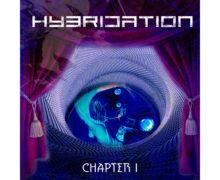 Hybridation copy