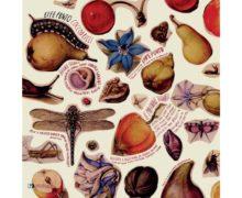 EffePunto-Coccodrilli-cover copy