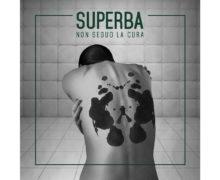Superba - Non seguo la cura Cover copy