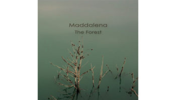 Maddalena - The Forest Cover copy