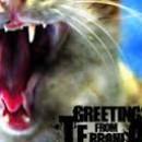 greetcat