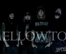 17_Mellowtoy