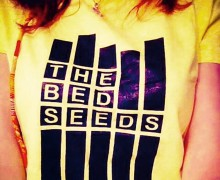 The Bed Seeds - Everything Is Perfect for a While