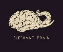 elephantBrain