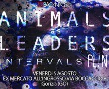 21_AnimalsAsLeaders
