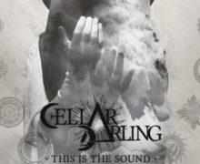 01_CellarDarling