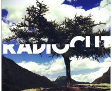 la-fabbrica-del-suono-radiocut copy