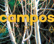 20_Campos
