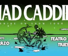 25_MadCaddies