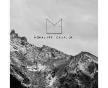 Mohabitat-Crisalide copy