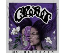 crobot-motherbrain-2019-500x500 copy