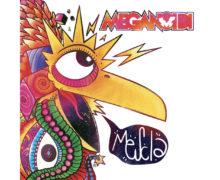 COPERTINA-RGB-MEGANOIDI-MESCLA-1024x1024 copy