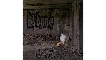 BS Bone – Inside Insanity COVER copy